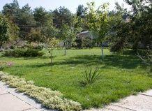 10 Головних помилок планування саду