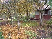 листова земля