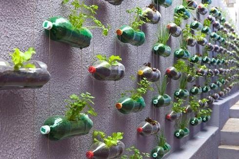горщики для квітів з пластикових пляшок, фото з сайту modeldesainrumah.com