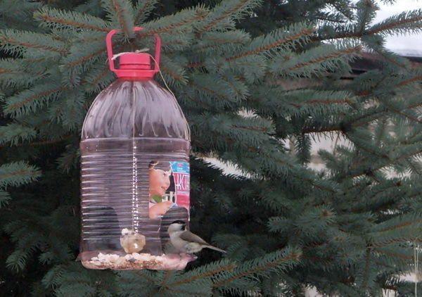 годівниця для птахів з пластикових пляшок, фото з сайту abekker.ru