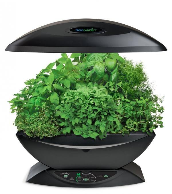 7 Розумних пристроїв для вирощування зелені на підвіконні