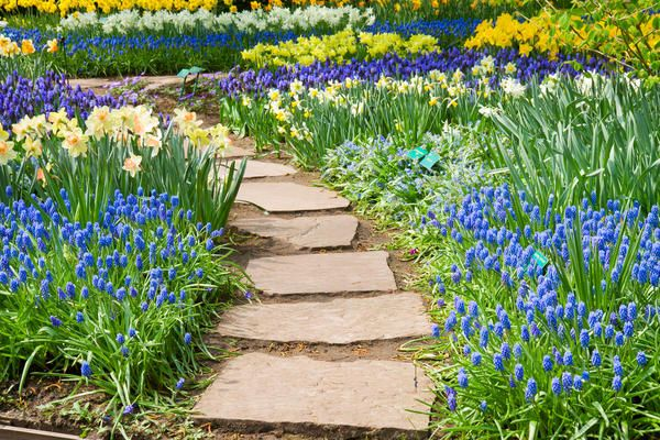 9 Матеріалів для пристрою садової доріжки