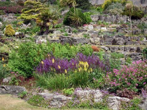 Альпійська гірка в садовому дизайні