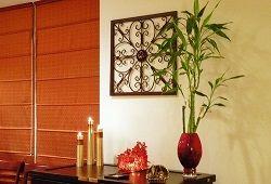 Бамбук в домашніх апартаментах: від карликів до велетнів