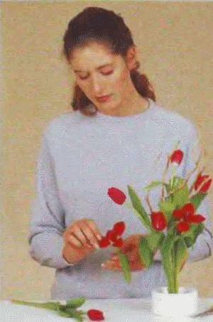 Квітковий декор: маки на стіні