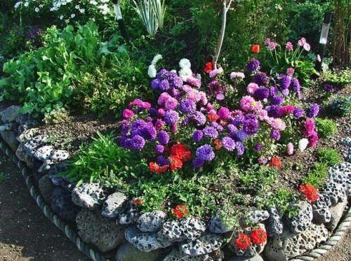 Клумби і квітники з однорічних