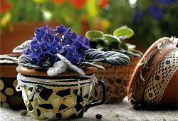Декорування квіткових горщиків своїми руками: ідеї для творчості