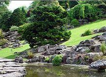 Формування садово-паркового мистецтва японії