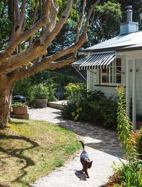 Екстер`єр будинку в Новій Зеландії
