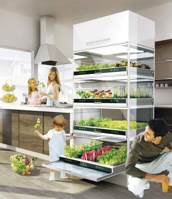 Концепт кухонного наносада від Hyundai. Фото з сайту http://favething.com