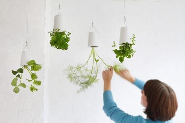 Підвісні конструкції Boskke Sky Planter. Фото з сайту http://designtherapy.it