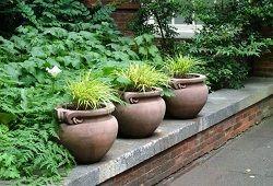 Глиняні горщики для улюблених квітів