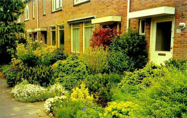 голландські дворики