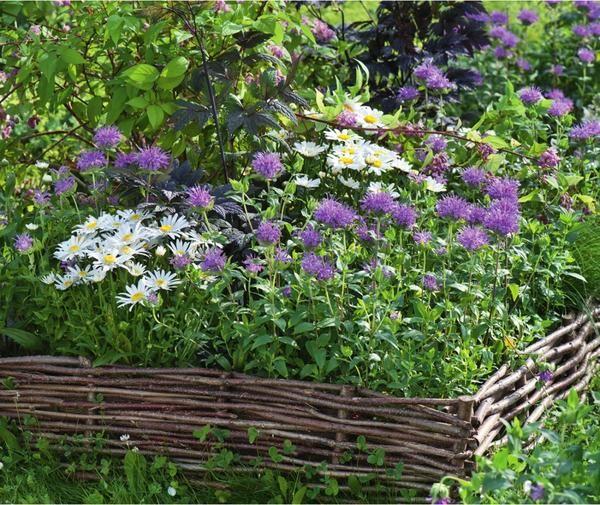 Городите город: ідеї оформлення квітників і грядок