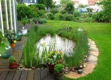 Готуємо садовий ставок до зими