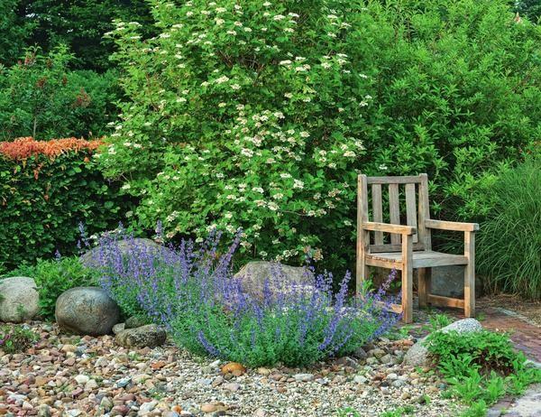 Гравійний сад, або 50 відтінків сірого