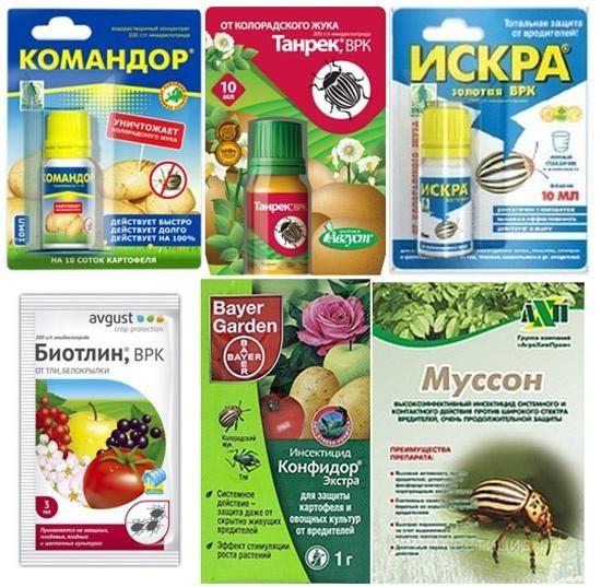 Системні інсектициди. Фото з сайту u-mama.ru, автор невідомий