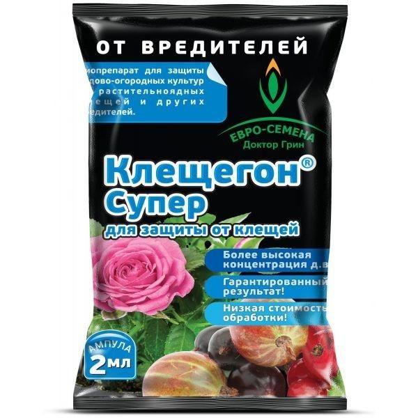 Клещегон, фото з сайту euro-semena.ru, автор невідомий