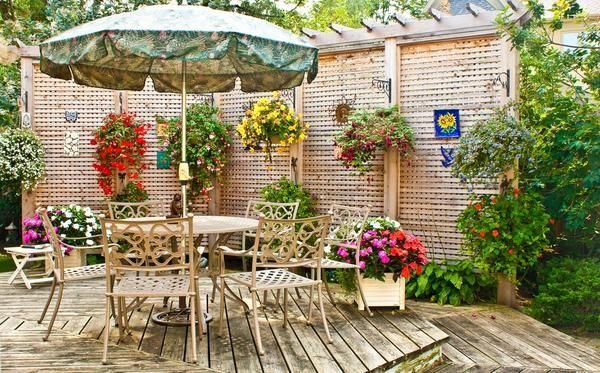 Прикрасьте патіо квітами у вазонах