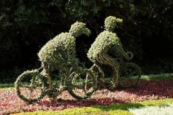 Ідеї клумб з велосипеда