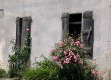 Італійські дворики сучасний ландшафтний дизайн