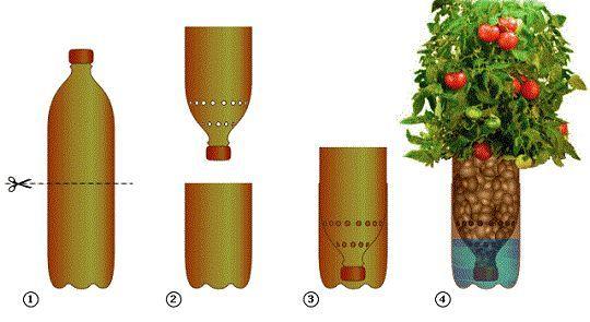 Ефективна домашня гідропоніка для квітів і овочів
