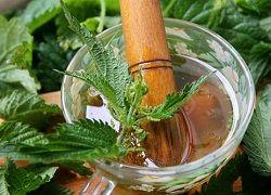 Як використовувати кропиву для лікування волосся?