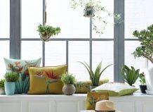Як кімнатним рослинам успішно пережити зиму