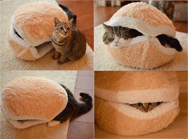Будиночок-гамбургер, фото з сайту http://thepariscat.files.wordpress.com
