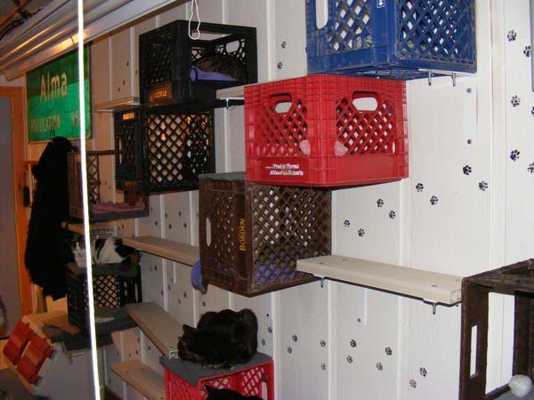 Котяче житло з ящиків, фото з сайту http://empressjad.files.wordpress.com