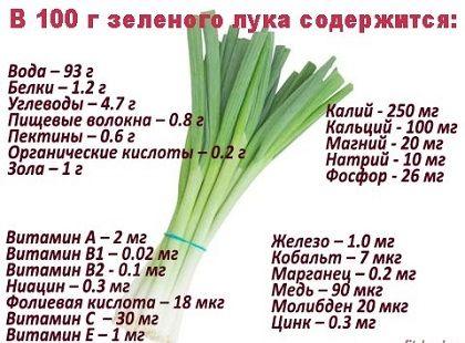 склад зеленої цибулі
