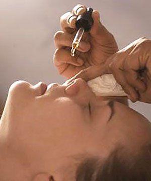 Настоянкою каланхое капають ніс при нежиті
