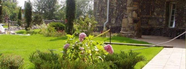 Як самому закласти сад