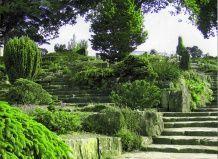 Як створити сад на схилі