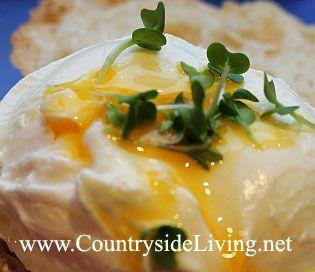 Яйце пашот на хлібі