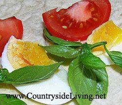 Рулет з яйцем на сніданок: круте яйце, помідор, базилік, загорнуті в лаваш