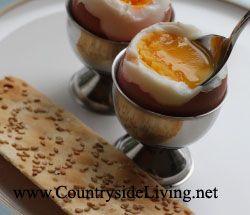 Як варити яйця