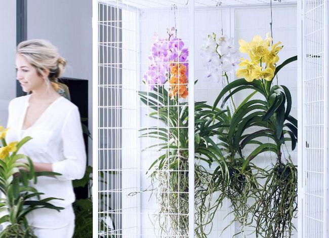 Декоративні рами для садових картин