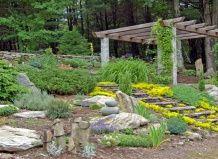 Кам`янистий сад