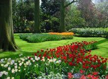 Кеукенхоф - унікальний квітковий парк