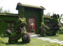 Китайський диво-сад