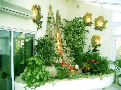 Кімнатні рослина очищають повітря
