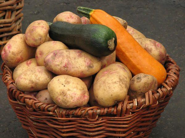 Картопля і кабачки - теж корм для бройлерів