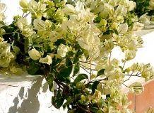 Корпоративні свята, квіти на ювілей начальства