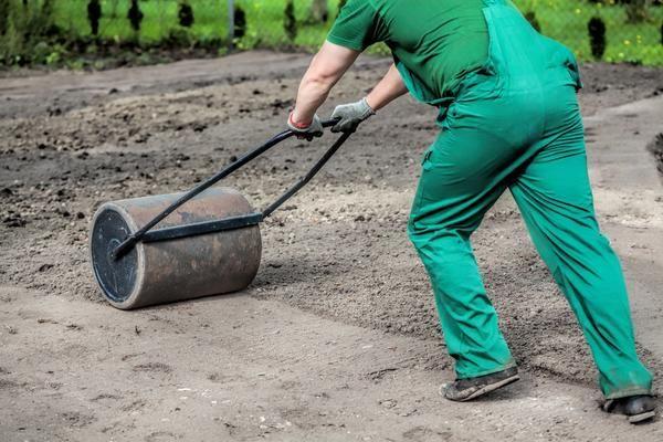 Вирівнювання і утрамбовка землі під газон