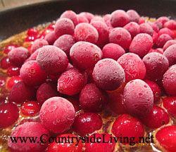 Червоний соус з журавлини, кураги і каррі