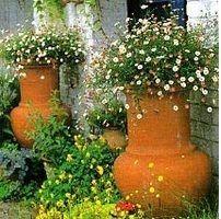 креативні квітники
