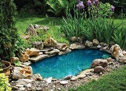 Креативний ставок зі старої ванни і покришок