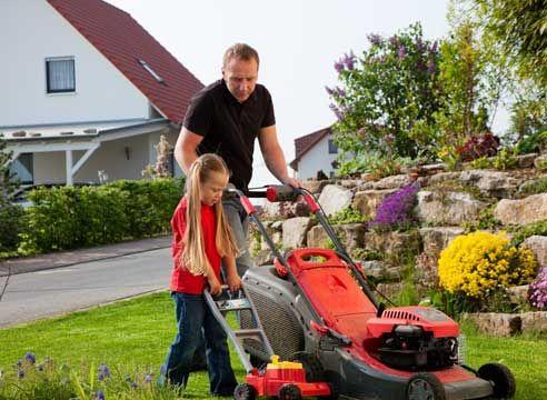 Кращі інструменти для саду