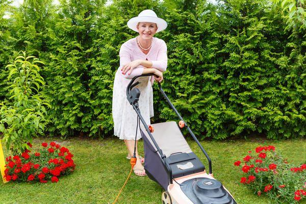 Газон день за днем: календар газонних робіт